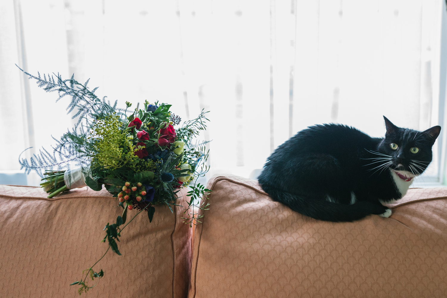 wedding bouquet and pet cat by Emma and Rich
