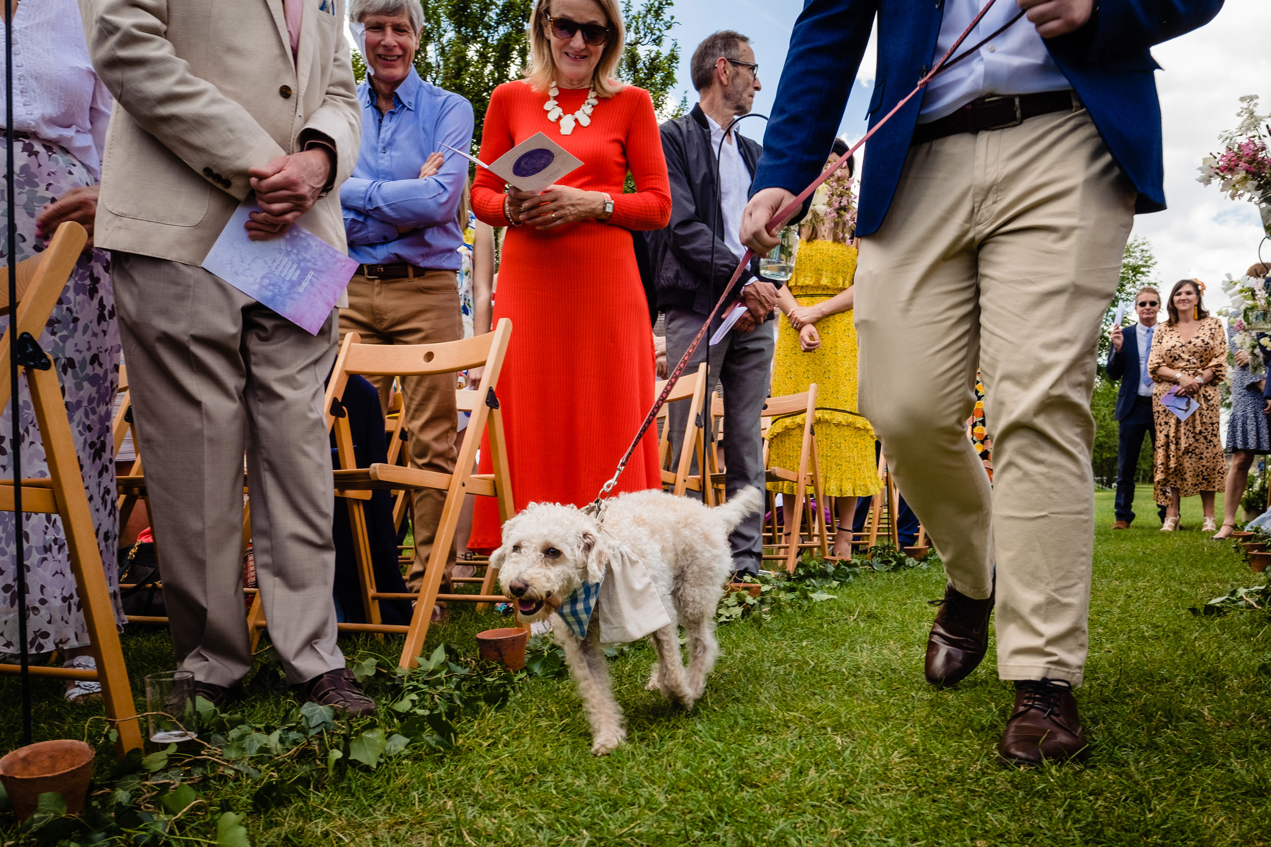 dog acts as ring bearer. maybush wedding co wedding photography by emma and rich.